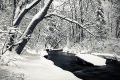 Rio no tempo de inverno Foto de Stock Royalty Free