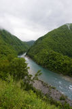 Rio no vale elevado Fotografia de Stock