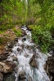Rio pequeno com água pura da geleira na madeira o parque nacional Gran Paradiso em Itália norte, Aosta foto de stock royalty free