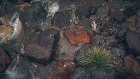 Rio pequeno com as costas rochosas que correm através de um vale da montanha vídeos de arquivo