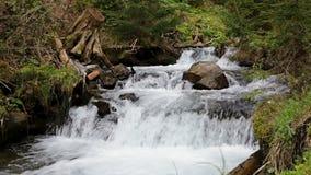 Rio pequeno da montanha que corre sobre rochas video estoque
