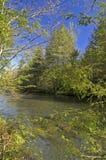 Rio pequeno do pombo, mola imagens de stock