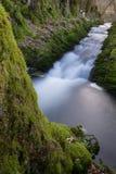 Rio pequeno em uma floresta alemão fotos de stock