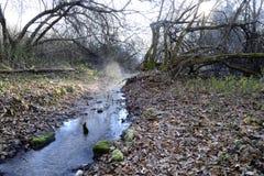Rio pequeno, manhã do inverno fotos de stock