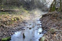 Rio pequeno, manhã do inverno imagens de stock royalty free