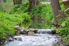 Rio pequeno na paisagem adiantada da mola Fotografia de Stock