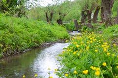 Rio pequeno na paisagem adiantada da mola Fotos de Stock Royalty Free