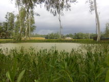 Rio pequeno natual imagem de stock