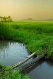 Rio pequeno no campo de almofada Foto de Stock Royalty Free