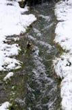 Rio pequeno no inverno imagem de stock