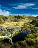 Rio pequeno no vale rural Fotografia de Stock Royalty Free