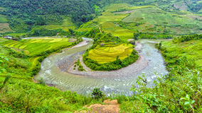 Rio pequeno que corre através de campos de campos terraced bonitos Imagem de Stock