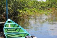 Rio preto em Amazonas, Brasil Um rio gigante parece um mar Usado aos peixes, navegue, jogue, alimente povos locais foto de stock