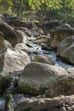 Rio profundamente na floresta da montanha fotografia de stock royalty free