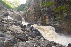 Rio Pushpavati rujir no passeio na montanha ao vale das flores, Uttarakhand, Índia Foto de Stock Royalty Free