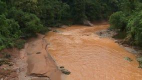 Rio que corre atrav?s da floresta vídeos de arquivo