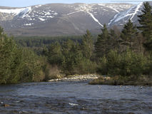Rio que corre no Loch Morlich, Avimore Fotos de Stock