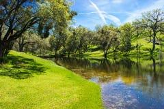Rio que esvazia na lagoa pequena cercada por árvores de Oake Fotografia de Stock