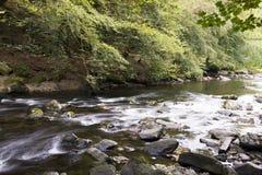 Rio que flui com rochas e árvores Foto de Stock