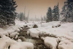 Rio que flui entre pedras Imagem de Stock