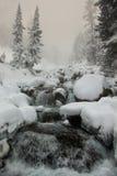 Rio que flui entre pedras Fotografia de Stock