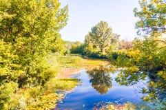 Rio quieto no parque Fotos de Stock