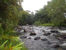 Rio Quindio Zdjęcia Stock
