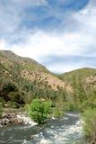 Rio rápido da montanha Imagem de Stock