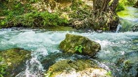 Rio rápido da montanha que flui entre rochas musgosos e filme