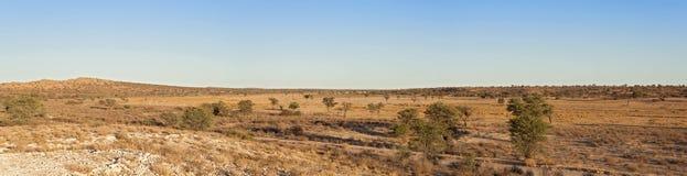 Rio seco de Nossob, África do Sul fotografia de stock
