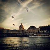 Rio Seine, Paris Fotografia de Stock