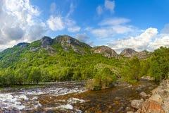 Rio selvagem Imagem de Stock