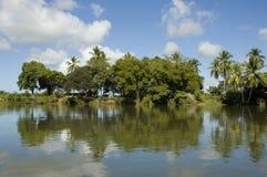 Rio Sierpe au Costa Rica. Photos stock