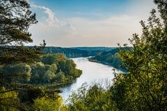 Rio silencioso selvagem Neman Panorama da água do rio da floresta do verão Reflexão do rio da floresta no verão fotos de stock royalty free
