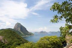 Rio, Sugar Loaf Mountain. Rio de Janeiro's famous landmark as seen from the top of a hill in Copacabana beach. Brazil Stock Photos