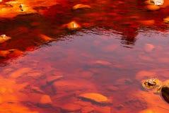 Rio Tinto (czerwona rzeka) Zdjęcia Royalty Free