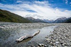 Rio trançado do início de uma sessão da madeira lançada à costa de Nova Zelândia Foto de Stock