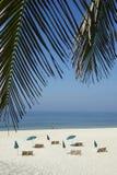 Rio Tropical Beach With Chairs e guarda-chuvas Foto de Stock Royalty Free