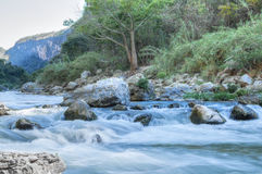 Rio tropical da garganta Imagem de Stock