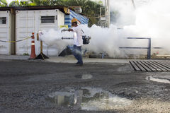 Rio verstärkt Kampf gegen Zikas Moskito Aedes aegypti Stockfotografie