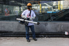 Rio verstärkt Kampf gegen Zikas Moskito Aedes aegypti Lizenzfreie Stockbilder