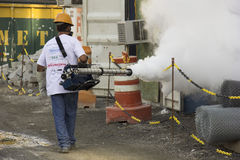 Rio verstärkt Kampf gegen Zikas Moskito Aedes aegypti Lizenzfreie Stockfotos