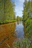Rio Vltava no parque nacional Sumava, Europa Fotografia de Stock