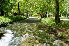 Rio Vrelo, tributário direito do rio Drina Imagem de Stock Royalty Free