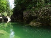 Rio Walchen perto do lago Sylvenstein Imagens de Stock Royalty Free