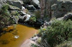 Rio Yuspe Arkivfoton