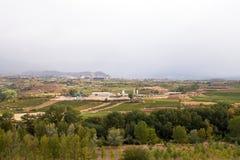 Rioja葡萄园和乡下,哈罗,北西班牙 图库摄影