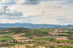 Rioja风景 免版税库存图片