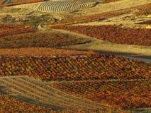 Rioja de La en automne Image stock