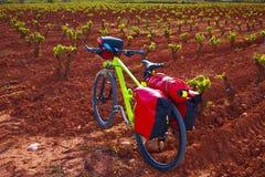 Rioja-Weinbergfahrrad die Weise von St James stockbilder
